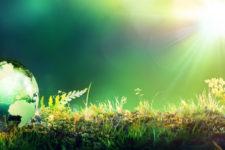 Gestión Ambiental en la empresa e ISO 14001